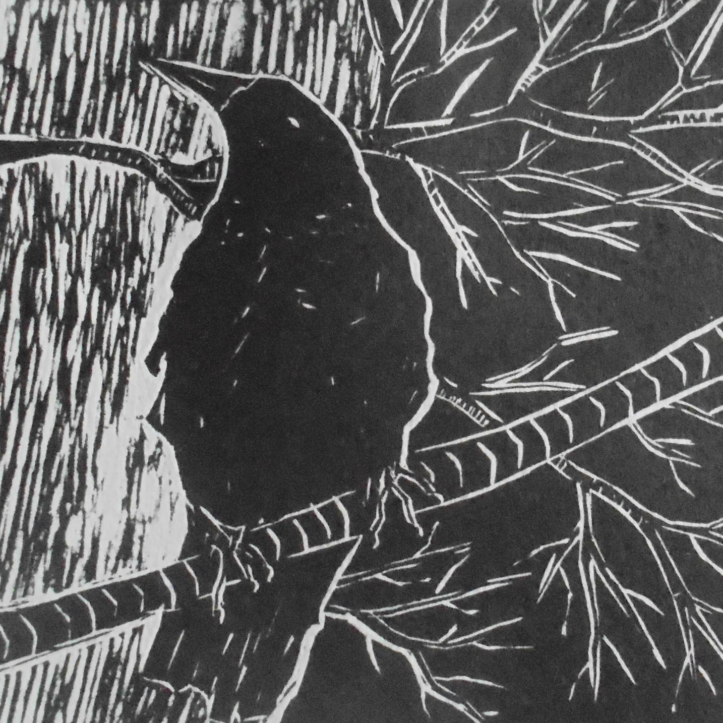 A single crow