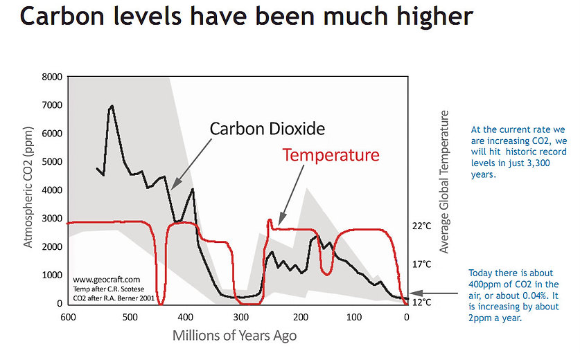 CO2 Levels vs Temperature.jpg