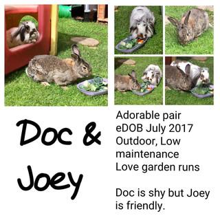Doc & Joey