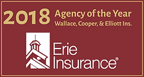 2018 Agency of the Year (2).png