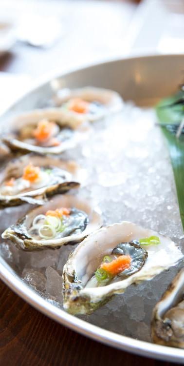 oyster1.jpg