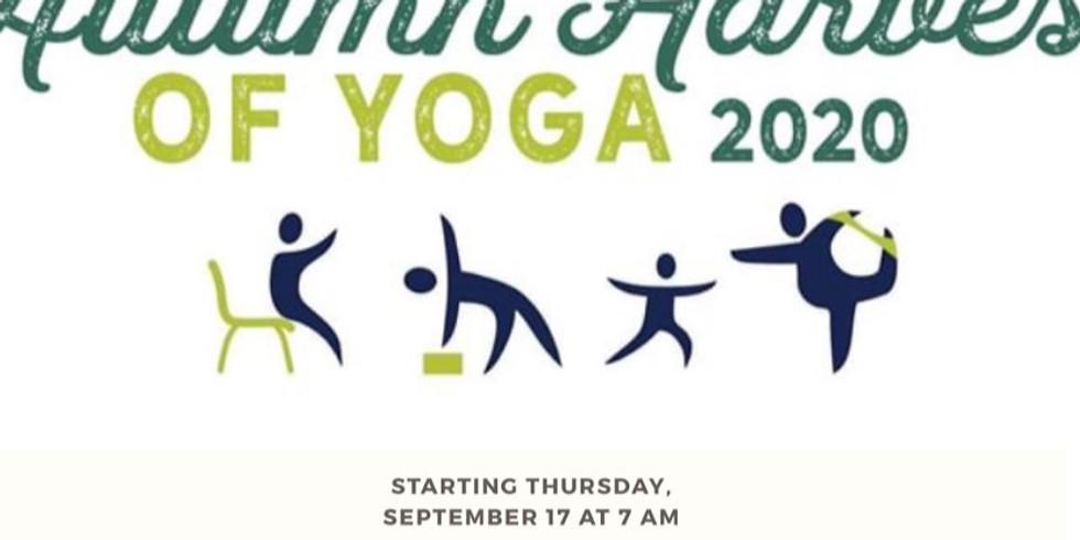 FREE On-line Yoga
