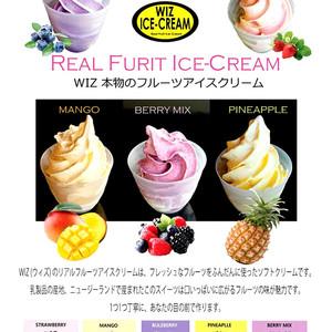 フルーツアイスクリーム!