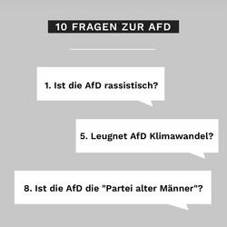 10 FRAGEN  ZUR AFD
