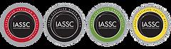 Logo de lean six sigma