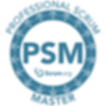 Professional Scrum Master - PSM I