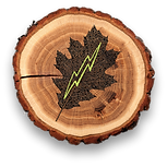 leaf bolt logo.png