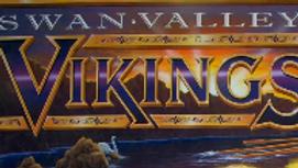 Viking Family / Business Membership