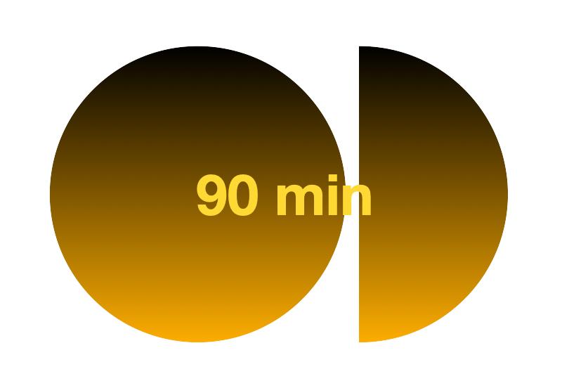 90 minute private show