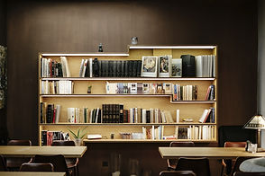 LiteShelf Classic library bookshelf