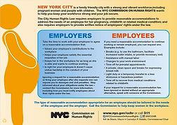 New York City Pregnancy Poster