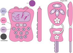 KEY AND CELLPHONE-BUTTERFLY-CD.jpg