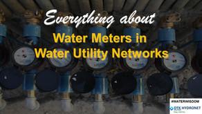 Water Metering in Water Utility Networks