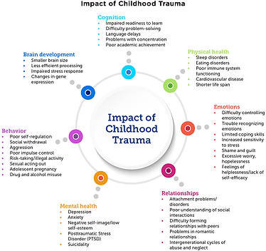 TraumaInformedCare_Figure2.png