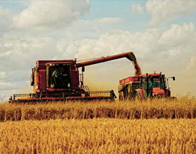 Agro Logistics.jpg
