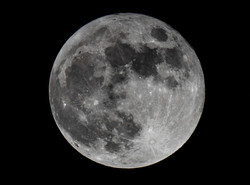 Buck Full Moon