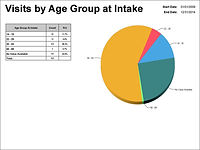 Visits by Age Group at Intake Pie Chart