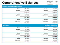 Comprehensive Balances Table
