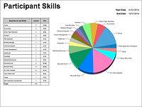 Participant Skills Pie Chart
