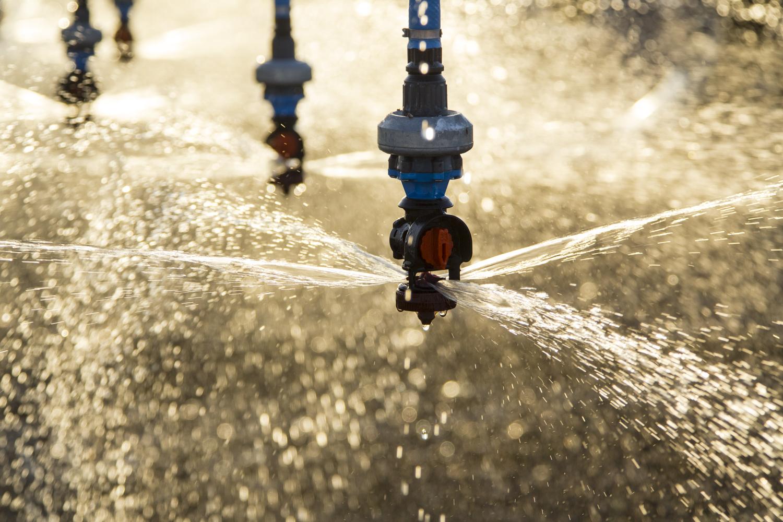 Texas_Irrigation_07