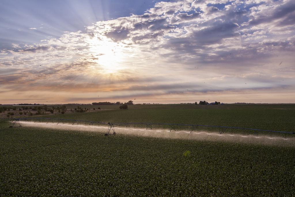 8000series_corn_aerial_yorkne_june2012_045_web