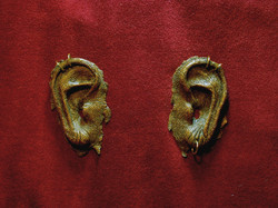ears - mummified.jpg