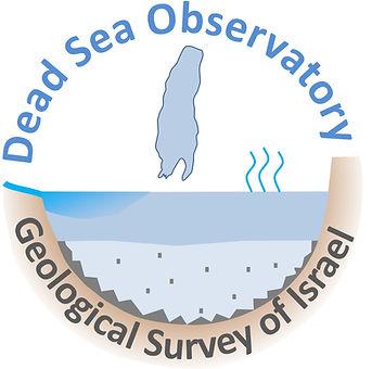 DS observatory logo (2)_edited.jpg