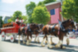 WLNE19-ART---BRISTOL-FOURTH--CLYDESDALES