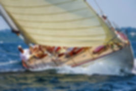 WLNE19-ART---12-METRE---YELLOW-SAIL.jpg