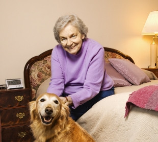 Guardianship of an Elderly Parent