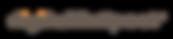 digital-exspect-logo.png