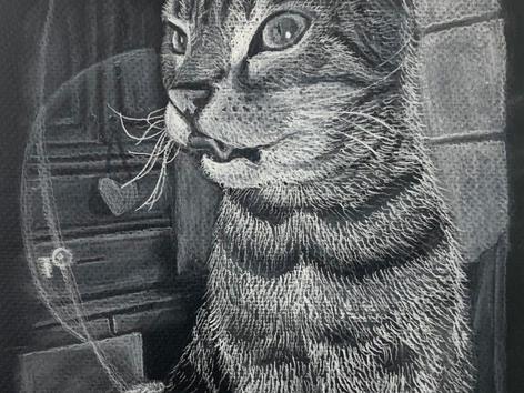 Cat Still Life 19x12, White pencil