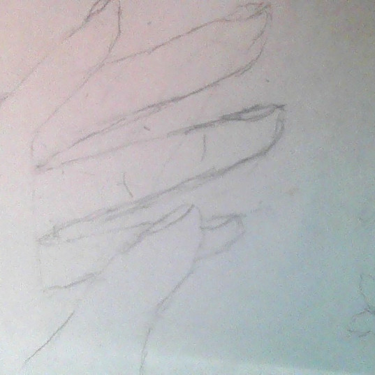 carrilloximena_10988_78899_Drawing.jpg