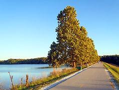 Lake Fayetteville Trails