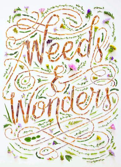 weeds-and-wonders-poster-3.jpg