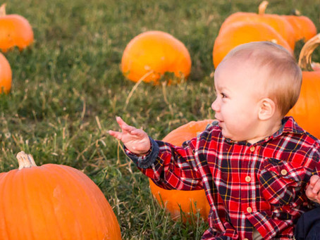 Fifty fun family fall festivities