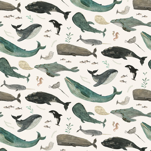 Whale's song
