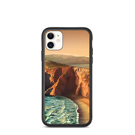 """iPhone case """"Tomales Point"""" by chateaugrief"""