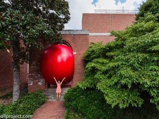 RedBall Chapel Hill