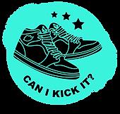 can i kick it