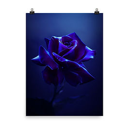 """Poster """"Midnight Rose"""" by Lilyas"""
