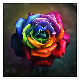 """Stickers """"Rainbow Dream Rose"""" by Lilyas"""