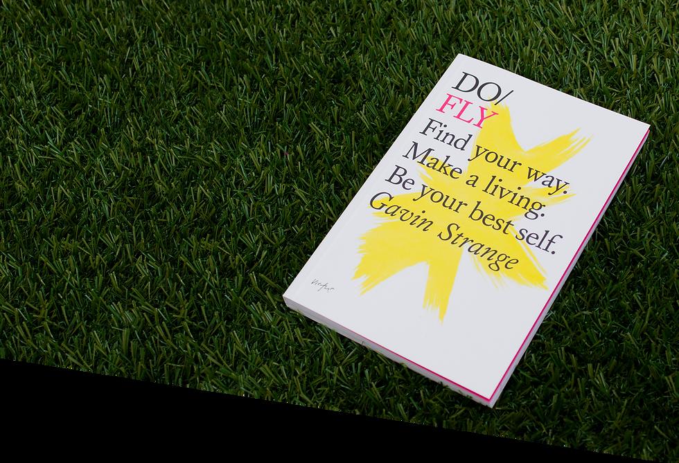 "Book ""Do fly"""