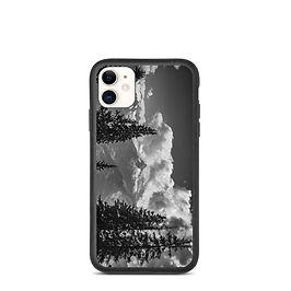 "iPhone case ""12"" by Schelly"