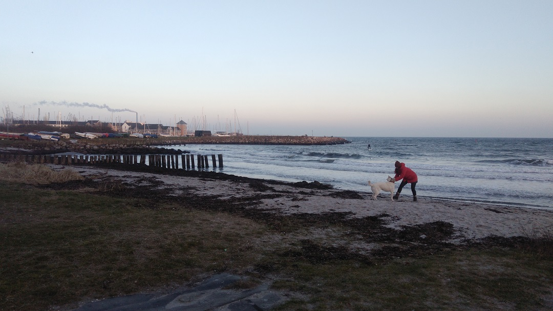 Playa en invierno