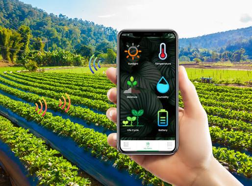 Bagaimana aplikasi teknologi merealisasikan Pertanian Pintar