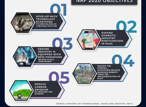 Directions and strategies of the NAP 2020 initiative