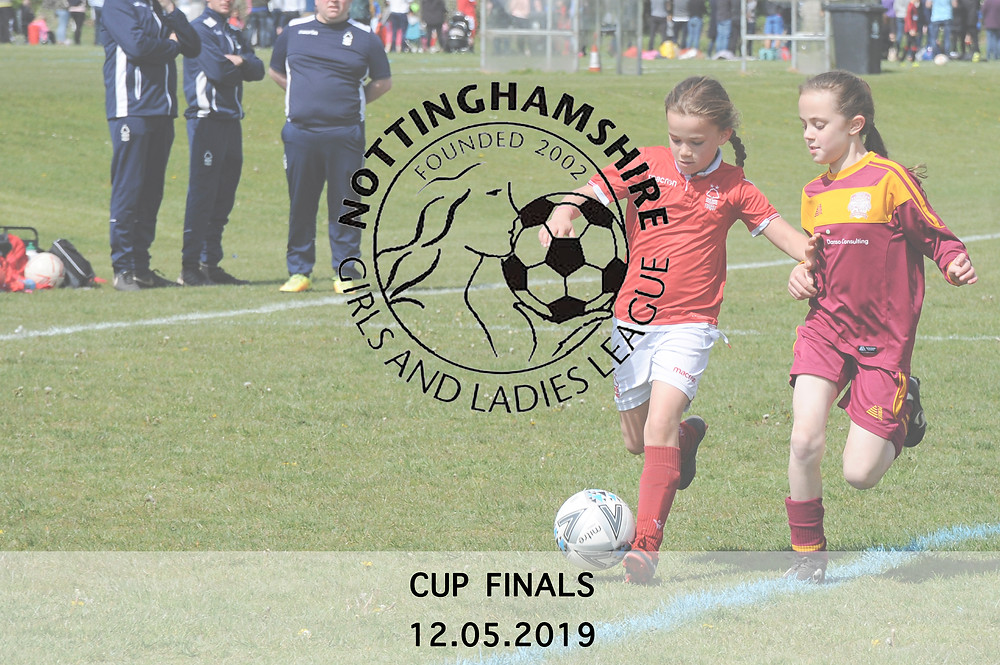 Notts Girls & Ladies League