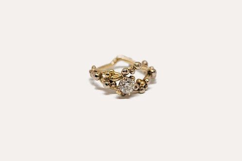 Diamond Ring - The Hidden Treasure