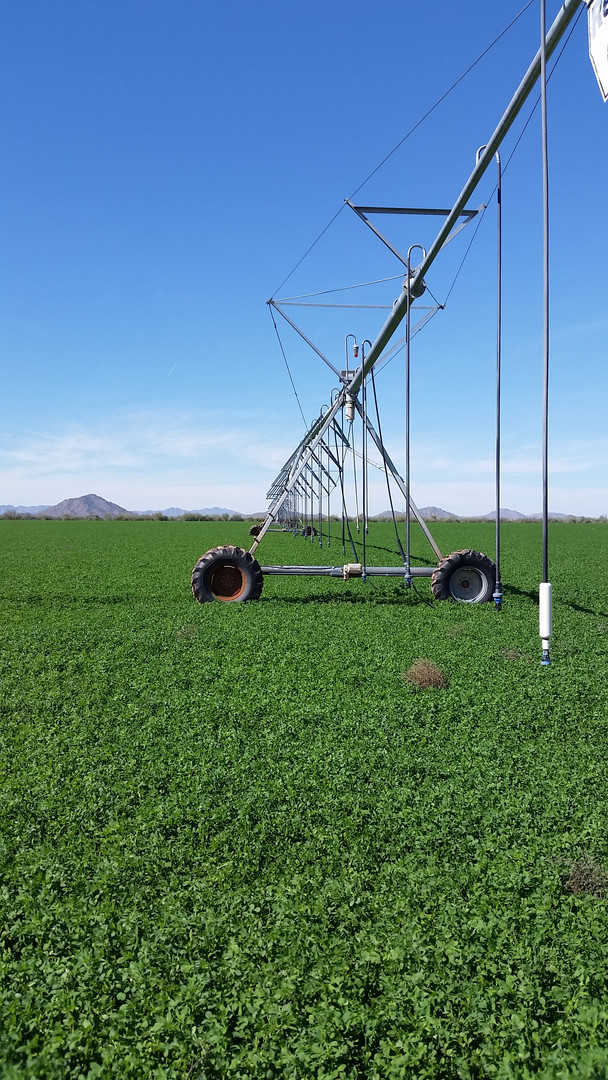 Reinke Irrigation Pivots.